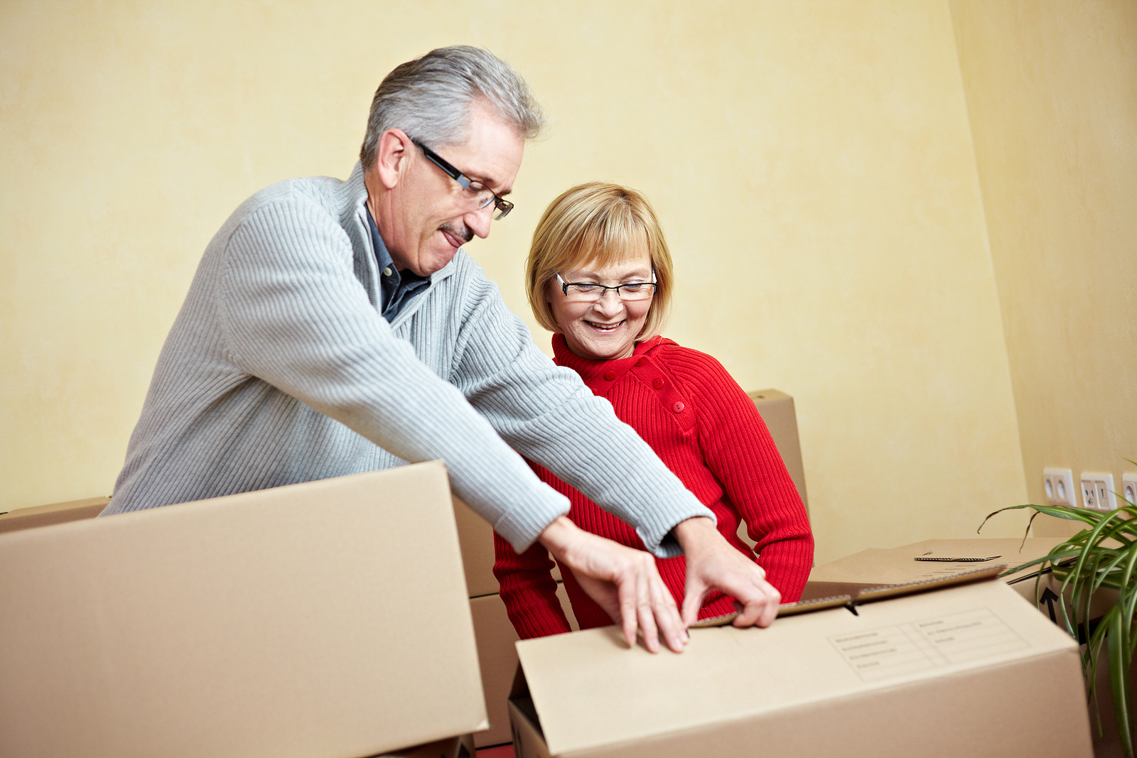 Happy senior couple packs boxes ahead of moving