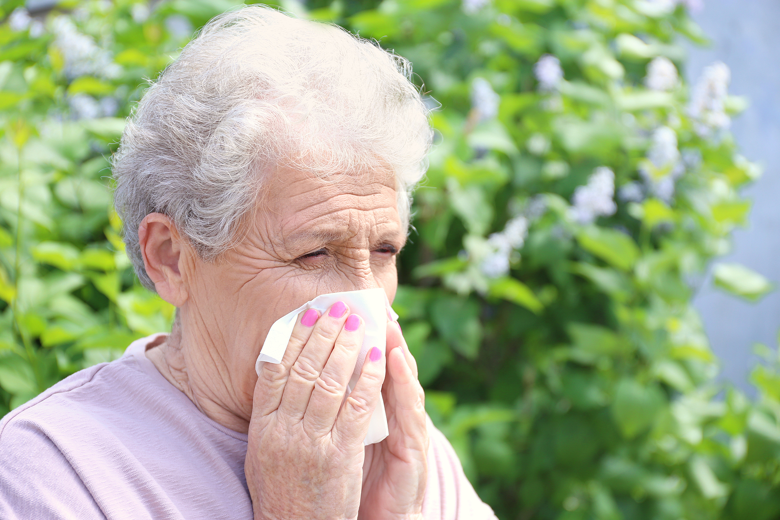 Senior woman uses a tissue to blow her nose for spring allergy relief