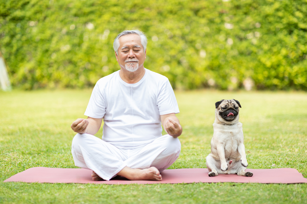 A senior man and a pug sit on a yoga mat and meditate